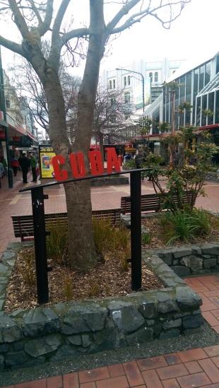 Pieter Labuschagne on Wellington's Cuba Street in New Zealand