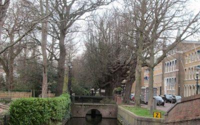 Den Haag – 'n stad wat so gesellig soos 'n dorp voel! deur Alana Bailey