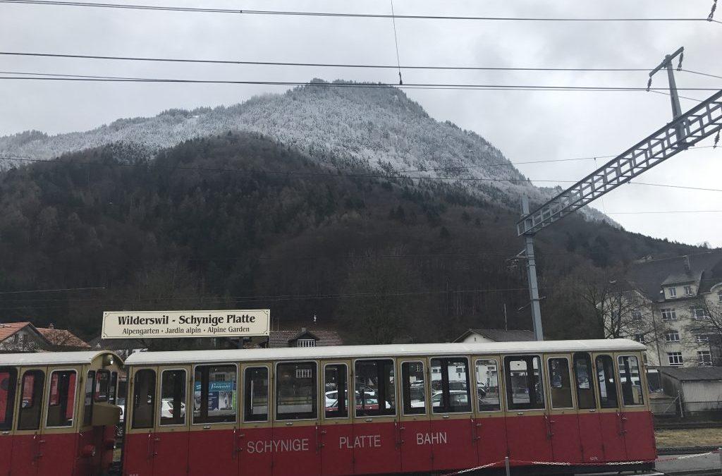 Van die Drakensberge tot die Jungfrau se hange: My verhaal as wêreldreisbeginner!