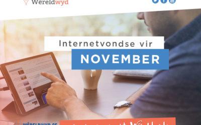 Internetvondse vir November