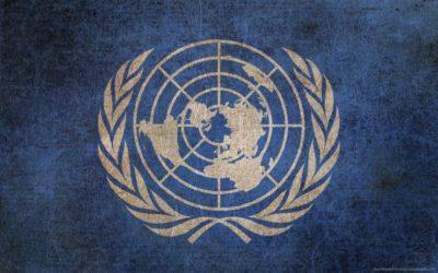 AfriForum en AfriForum Jeug doen voorlegging aan VN Forum vir Minderheidsaangeleenthede