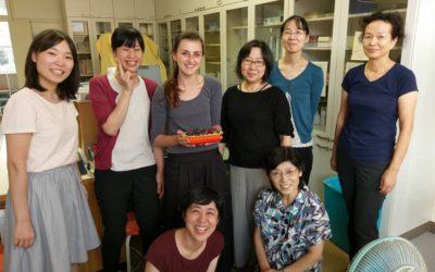 E-pos uit die buiteland: Avonture in Japan – Deel drie
