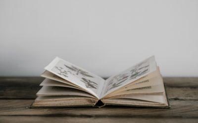 Boek van die week: Video Idees