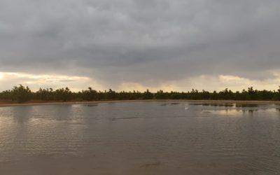 Hartswater: 'n Klap in die woestyn se gesig