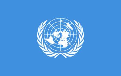 AfriForum by VN se Afrika-Midde-Oosterse Forum vir Onderwys, Taal en die Menseregte van Minderhede