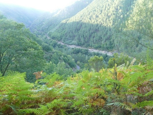 Our Galicia Getaway