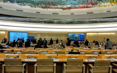 UN forum: SA representative responds with deception to AfriForum's submission