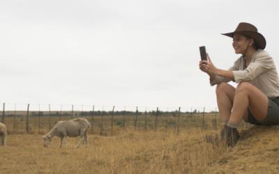 Video: Hester Verlang