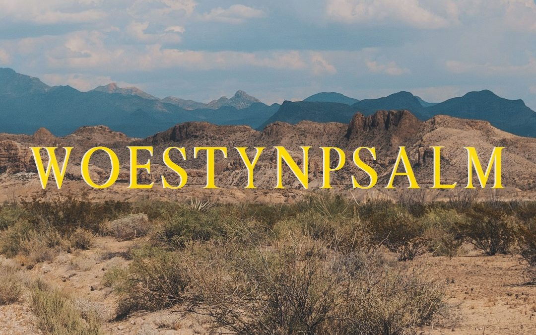 Woestynpsalm: A first for new Namibian film company