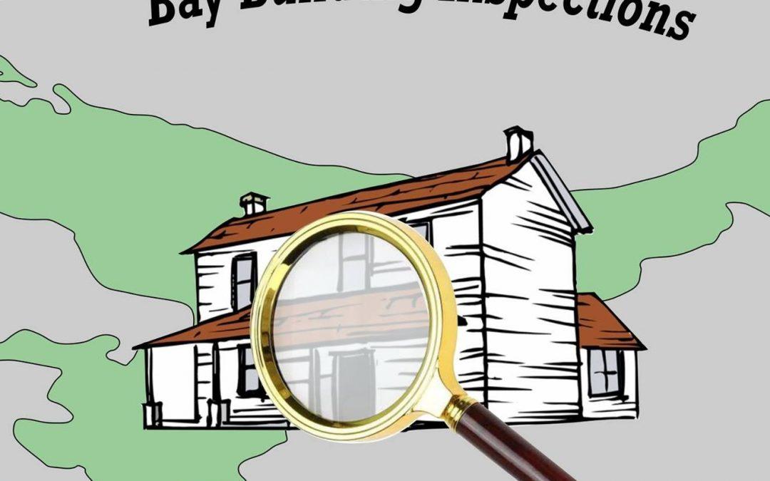 Onderneming in die Kollig: Bay Building Inspections