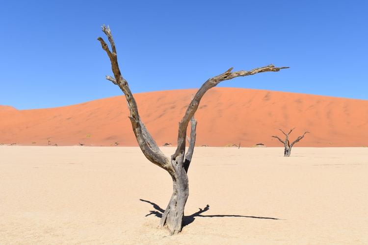 Namibië – die kleurvolle woestynland